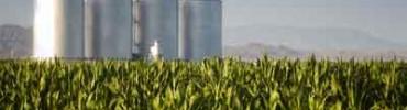 etano-usina